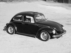 Käfer (46)